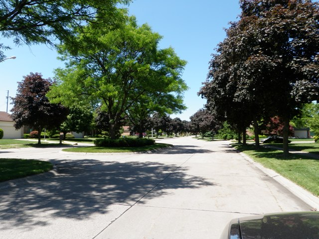 Street Views of Windridge Village Livonia Michigan